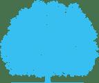 ZUMEDIA Web Agency: realizzazione siti web Firenze